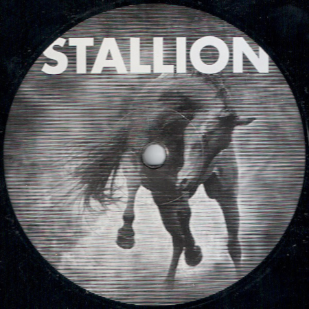 Stallion 001